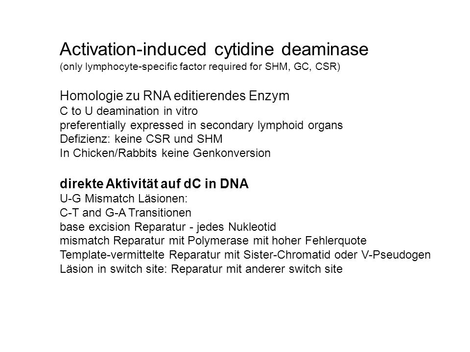 Activation-induced cytidine deaminase