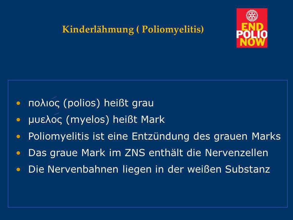Kinderlähmung ( Poliomyelitis)