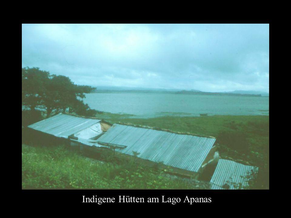 Indigene Hütten am Lago Apanas