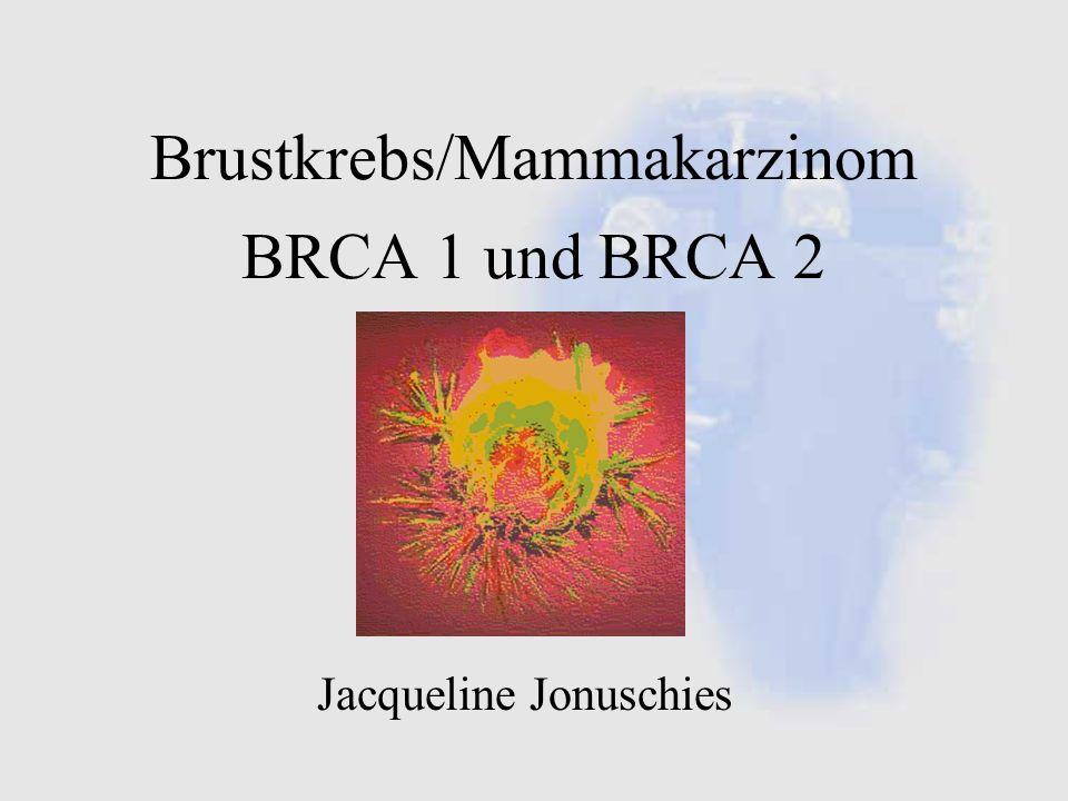 Brustkrebs/Mammakarzinom BRCA 1 und BRCA 2