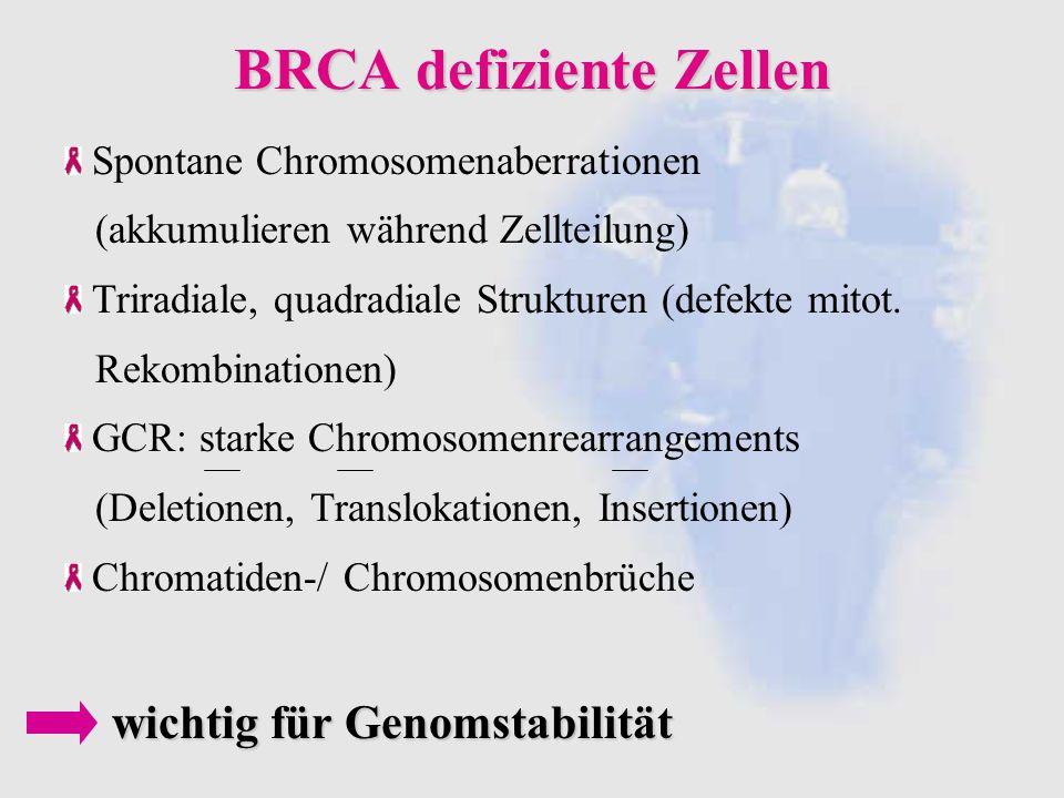 BRCA defiziente Zellen