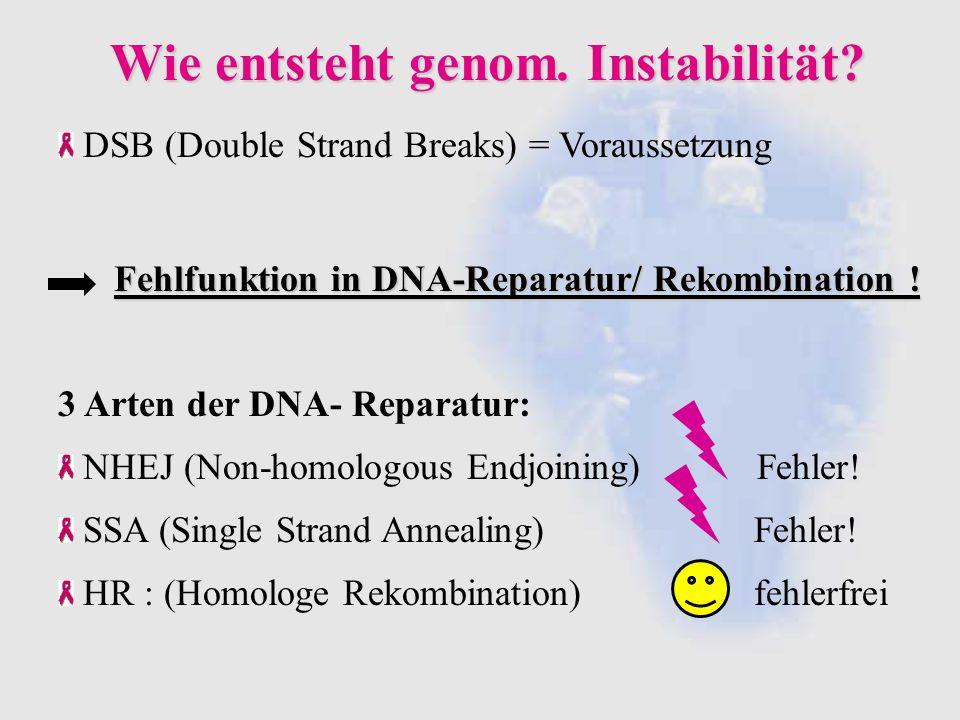 Wie entsteht genom. Instabilität