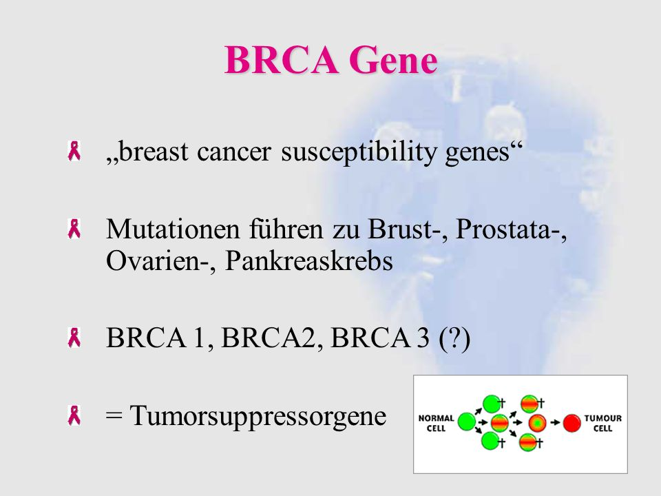 "BRCA Gene ""breast cancer susceptibility genes"