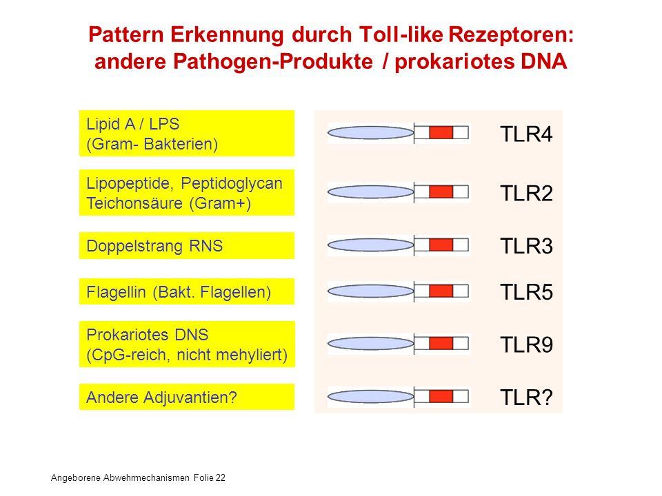 Pattern Erkennung durch Toll-like Rezeptoren: andere Pathogen-Produkte / prokariotes DNA