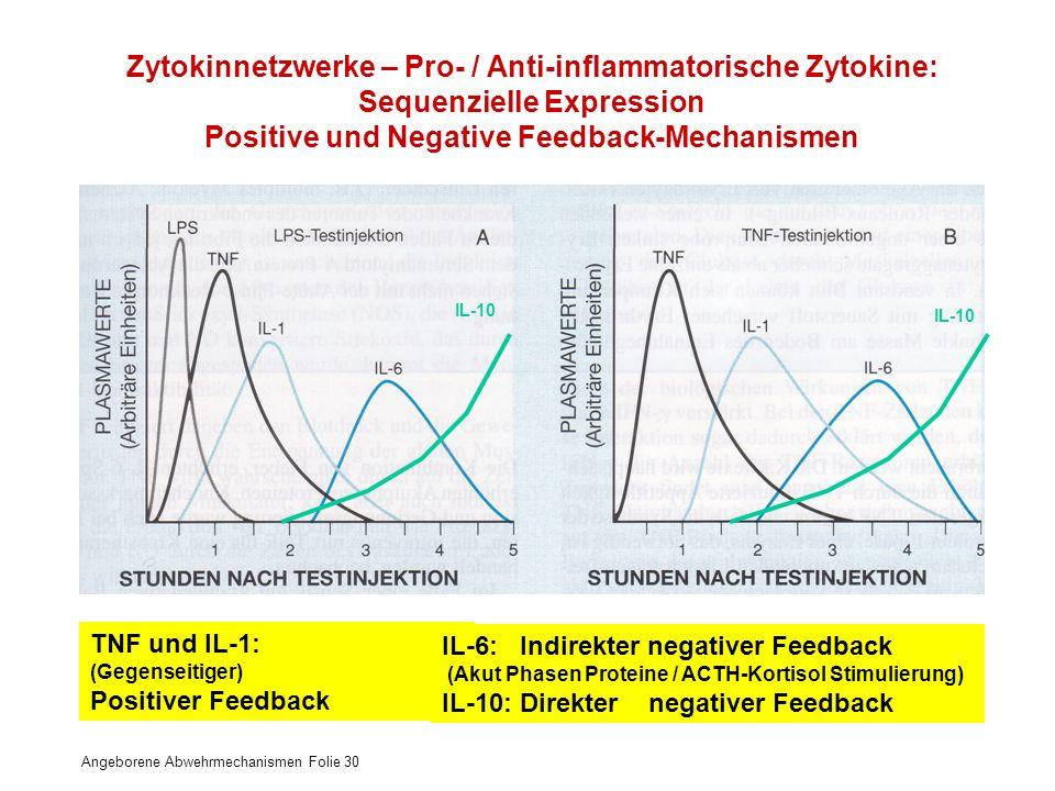 Zytokinnetzwerke – Pro- / Anti-inflammatorische Zytokine: Sequenzielle Expression Positive und Negative Feedback-Mechanismen