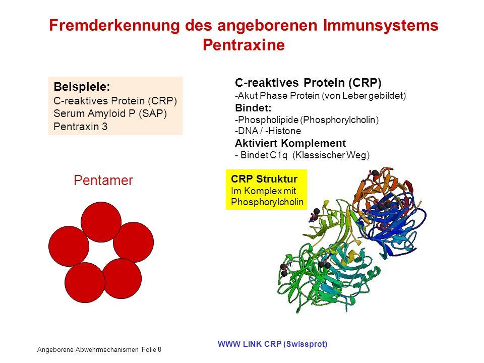 Fremderkennung des angeborenen Immunsystems Pentraxine