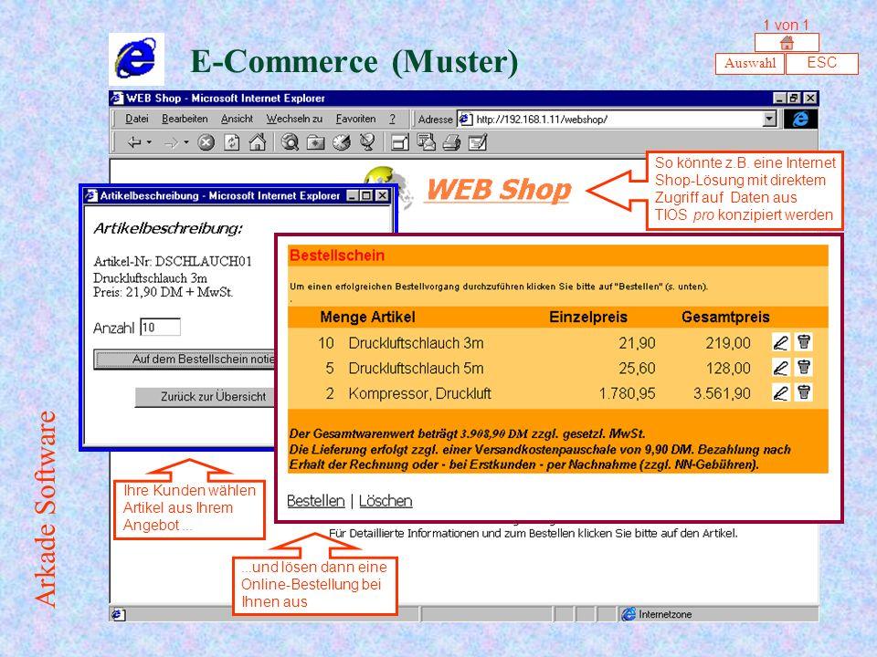 E-Commerce (Muster) Arkade Software 1 von 1 Auswahl ESC
