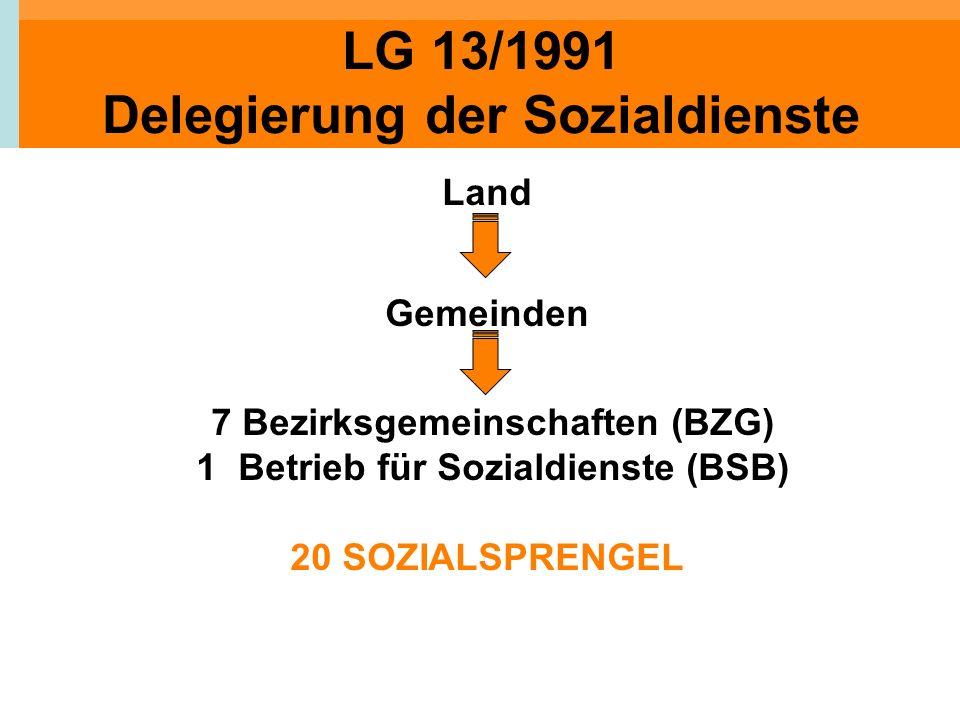 LG 13/1991 Delegierung der Sozialdienste