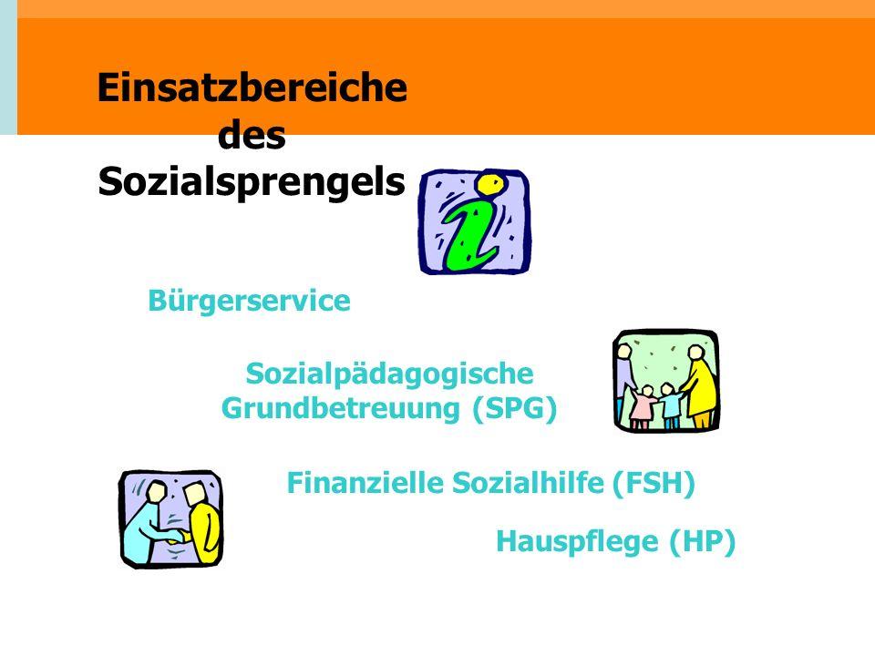 Einsatzbereiche des Sozialsprengels