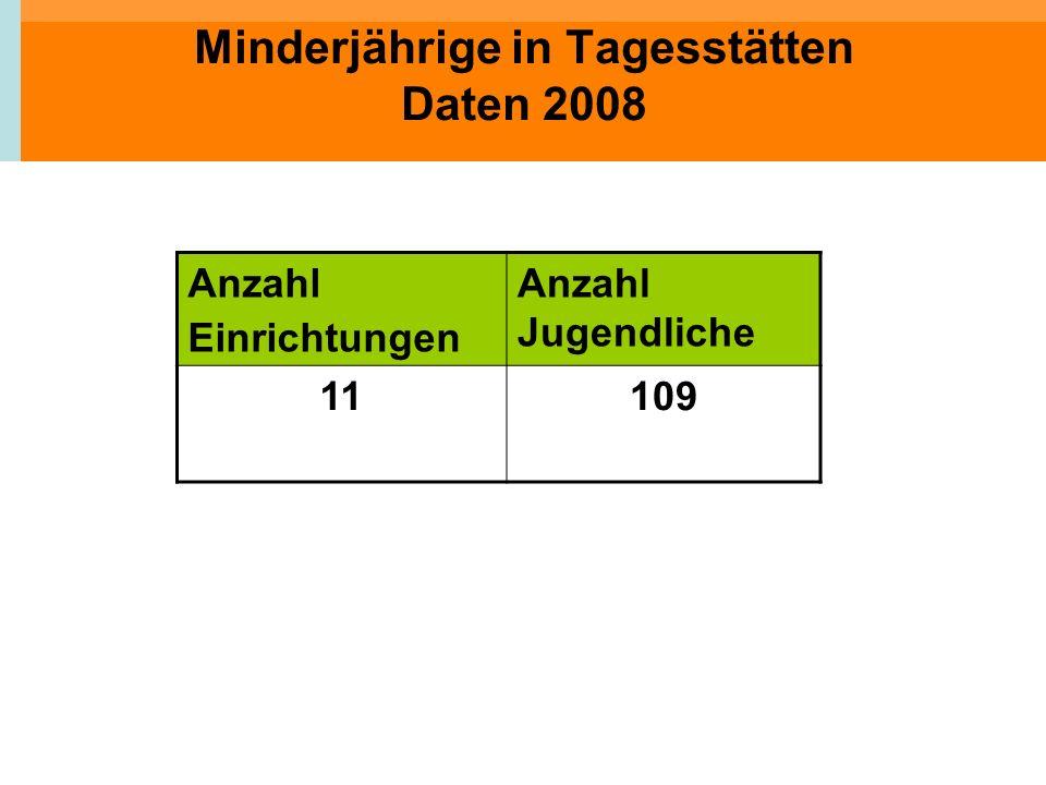 Minderjährige in Tagesstätten Daten 2008
