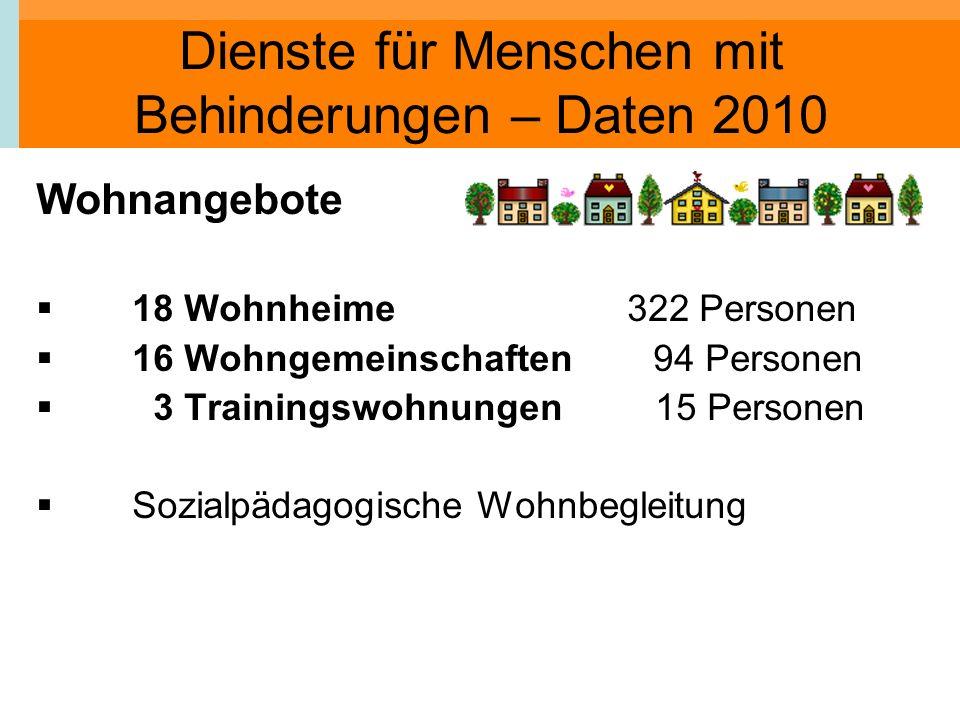 Dienste für Menschen mit Behinderungen – Daten 2010