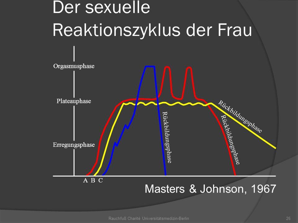 Der sexuelle Reaktionszyklus der Frau