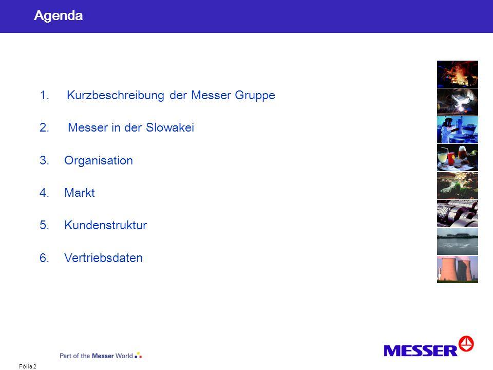 Agenda 1. Kurzbeschreibung der Messer Gruppe 2. Messer in der Slowakei