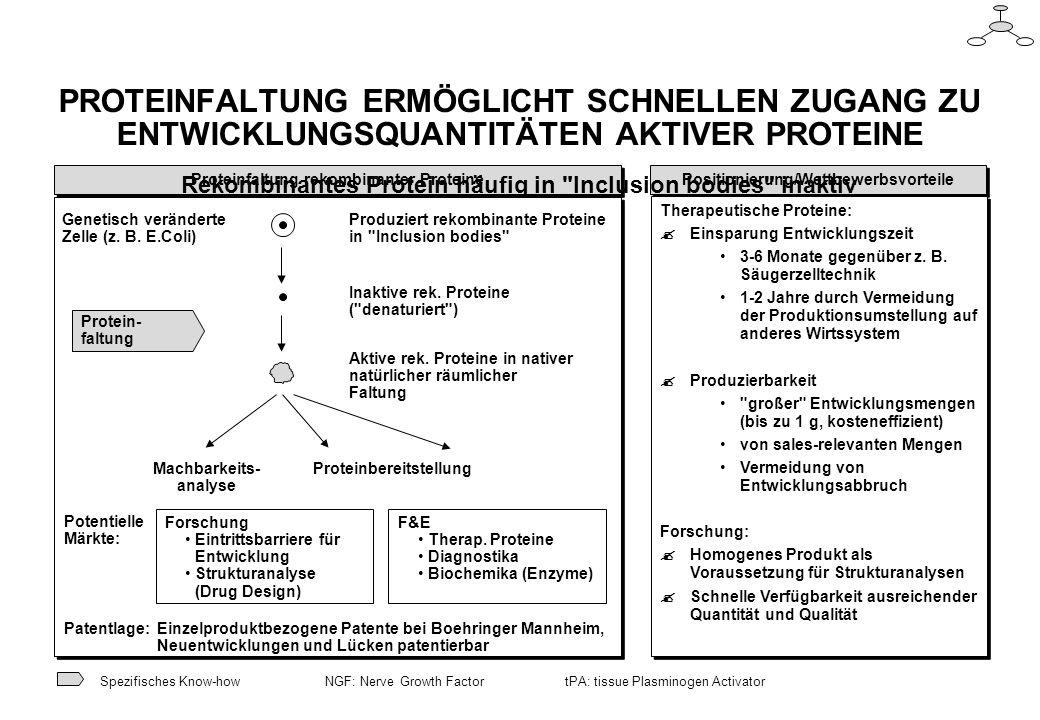 PROTEINFALTUNG ERMÖGLICHT SCHNELLEN ZUGANG ZU ENTWICKLUNGSQUANTITÄTEN AKTIVER PROTEINE Rekombinantes Protein häufig in Inclusion bodies inaktiv