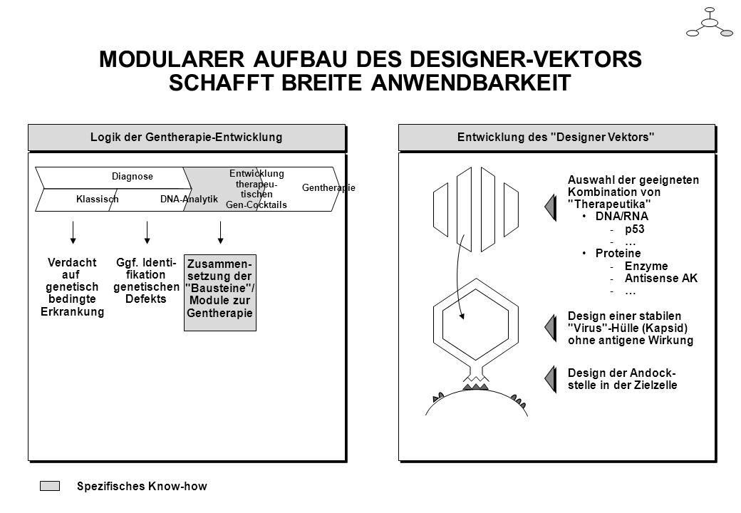 MODULARER AUFBAU DES DESIGNER-VEKTORS SCHAFFT BREITE ANWENDBARKEIT