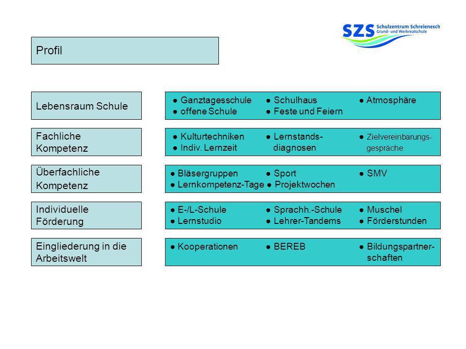Profil Lebensraum Schule Fachliche Kompetenz Überfachliche Kompetenz