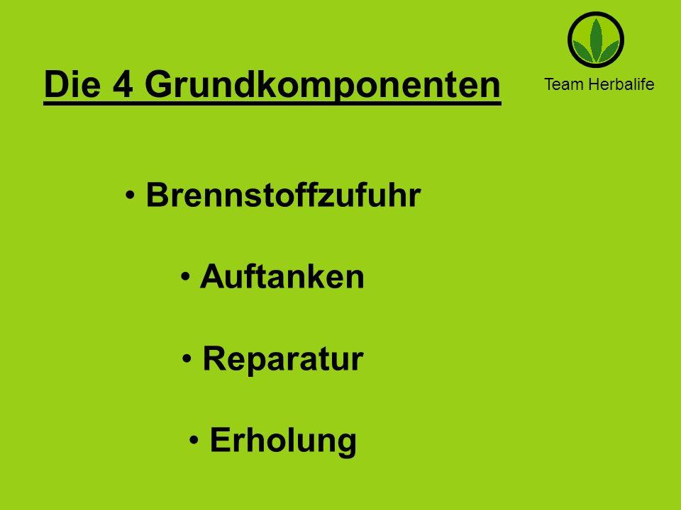 Die 4 Grundkomponenten Brennstoffzufuhr Auftanken Reparatur Erholung