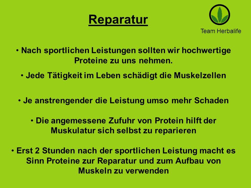 ReparaturTeam Herbalife. Nach sportlichen Leistungen sollten wir hochwertige Proteine zu uns nehmen.
