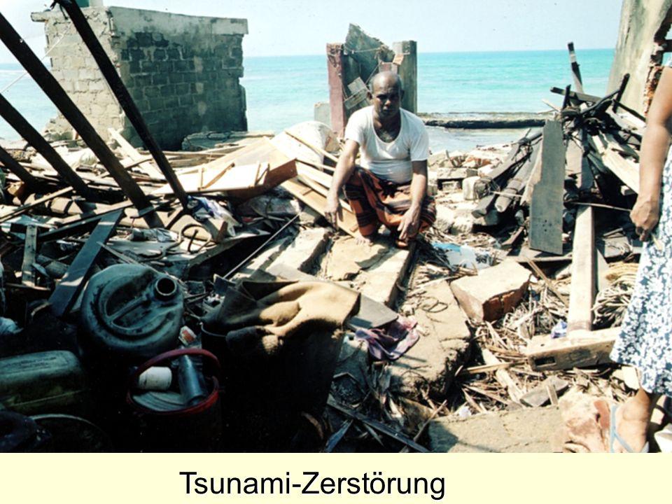 Tsunami-Zerstörung