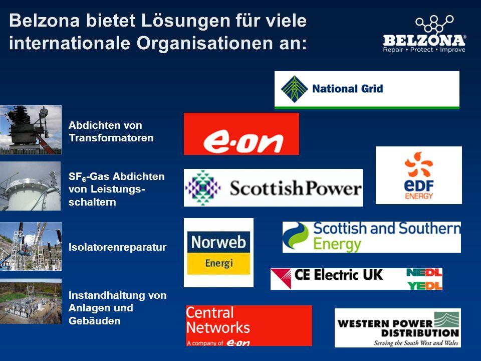 Belzona bietet Lösungen für viele internationale Organisationen an: