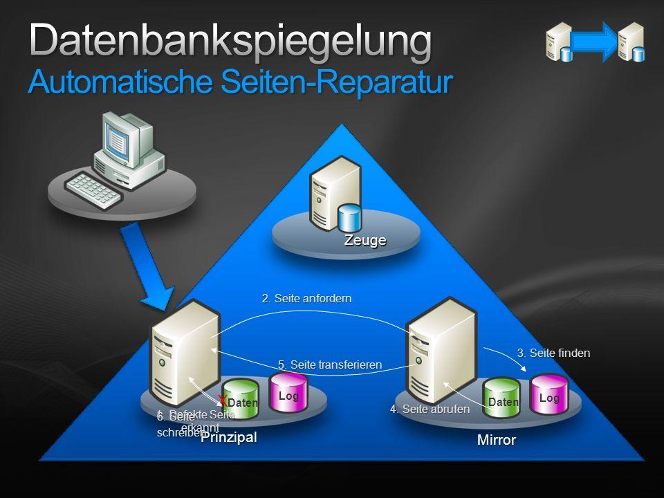 Datenbankspiegelung Automatische Seiten-Reparatur