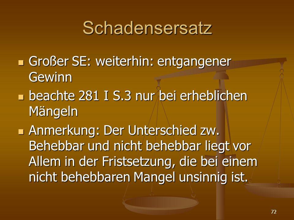 Schadensersatz Großer SE: weiterhin: entgangener Gewinn