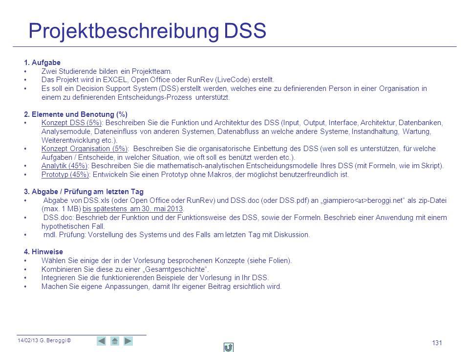 Projektbeschreibung DSS