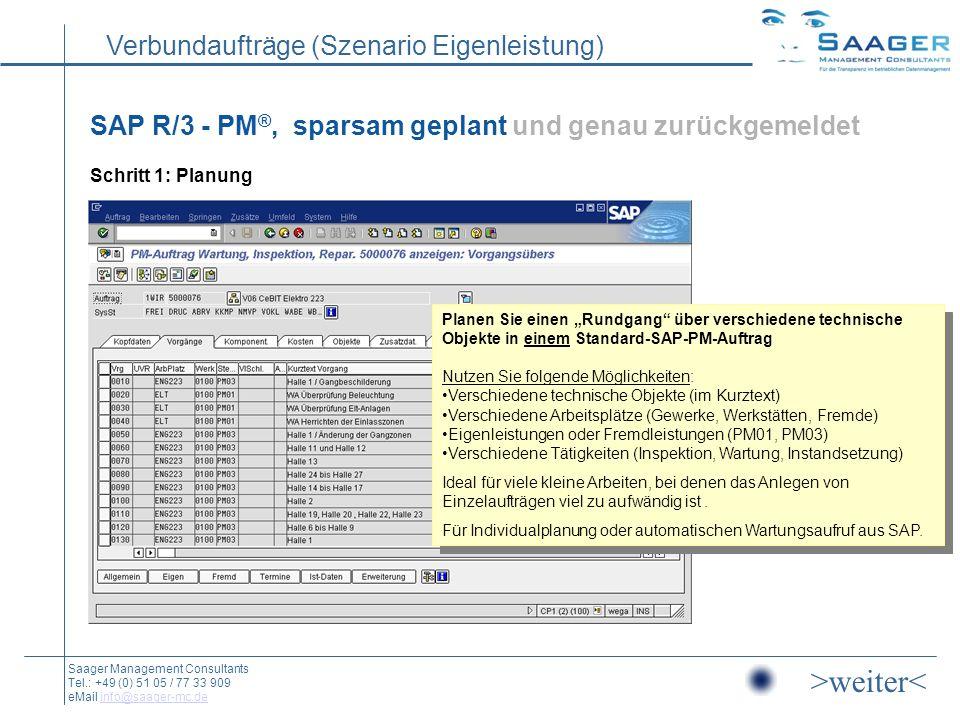 SAP R/3 - PM®, sparsam geplant und genau zurückgemeldet Schritt 1: Planung