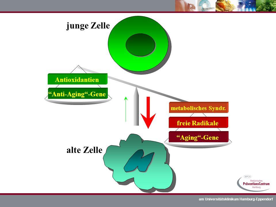 junge Zelle alte Zelle Antioxidantien Anti-Aging -Gene freie Radikale