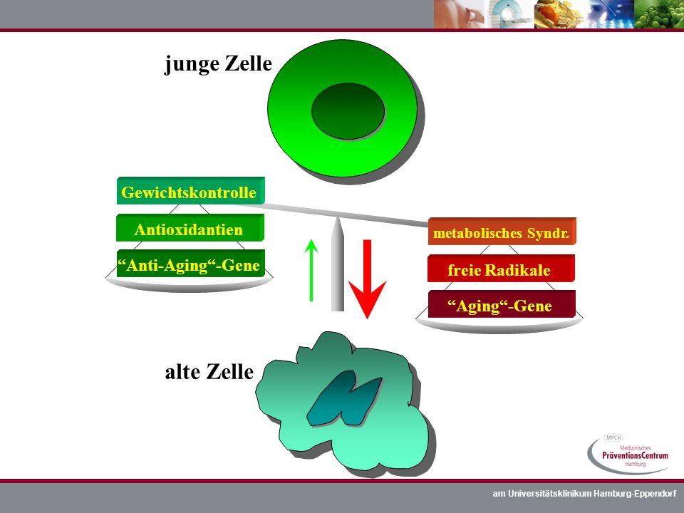 junge Zelle alte Zelle Gewichtskontrolle Antioxidantien