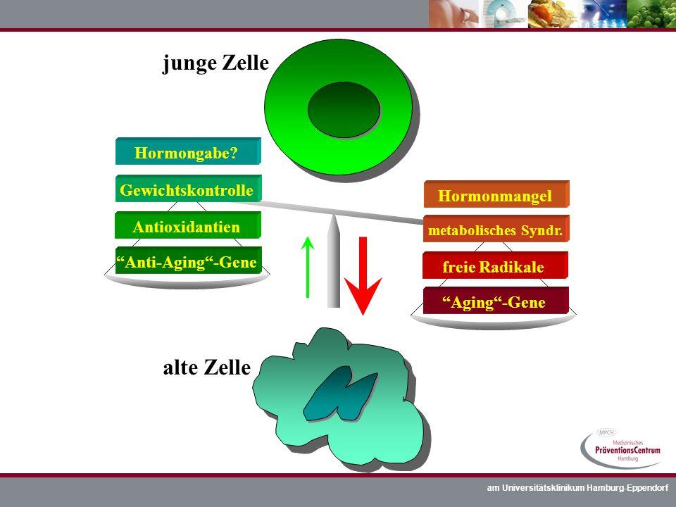 junge Zelle alte Zelle Hormongabe Gewichtskontrolle Hormonmangel
