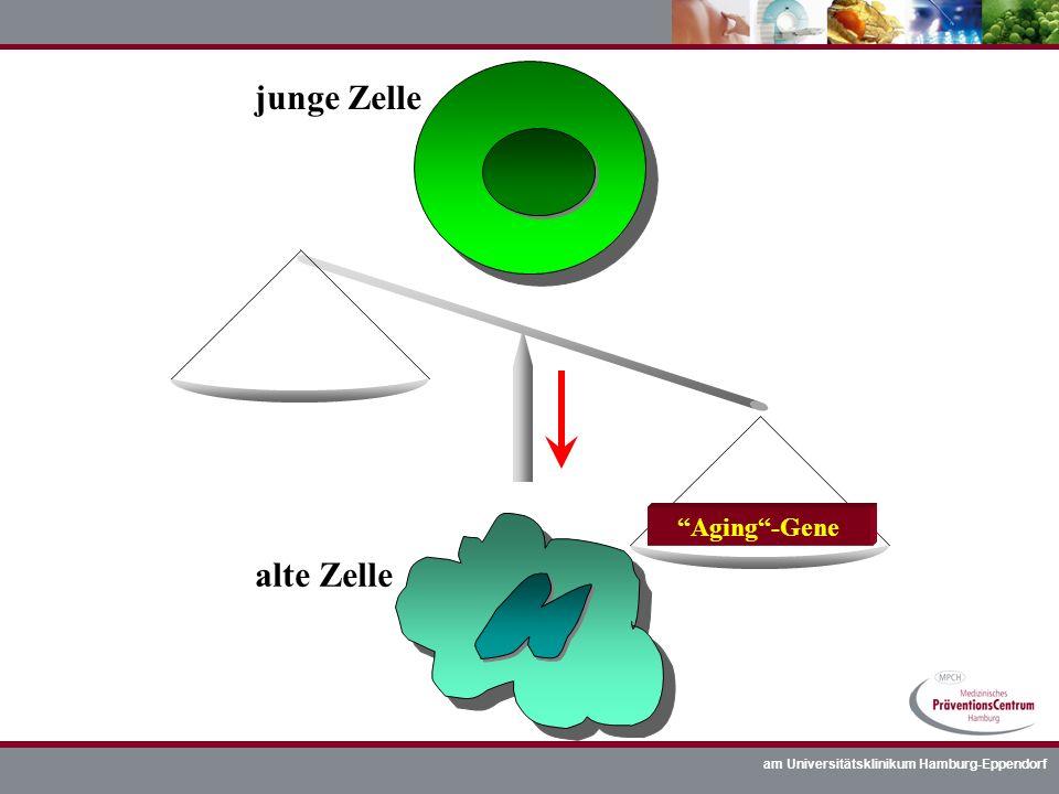 junge Zelle alte Zelle Aging -Gene