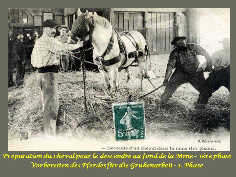 Vorbereiten des Pferdes für die Grubenarbeit - 1. Phase