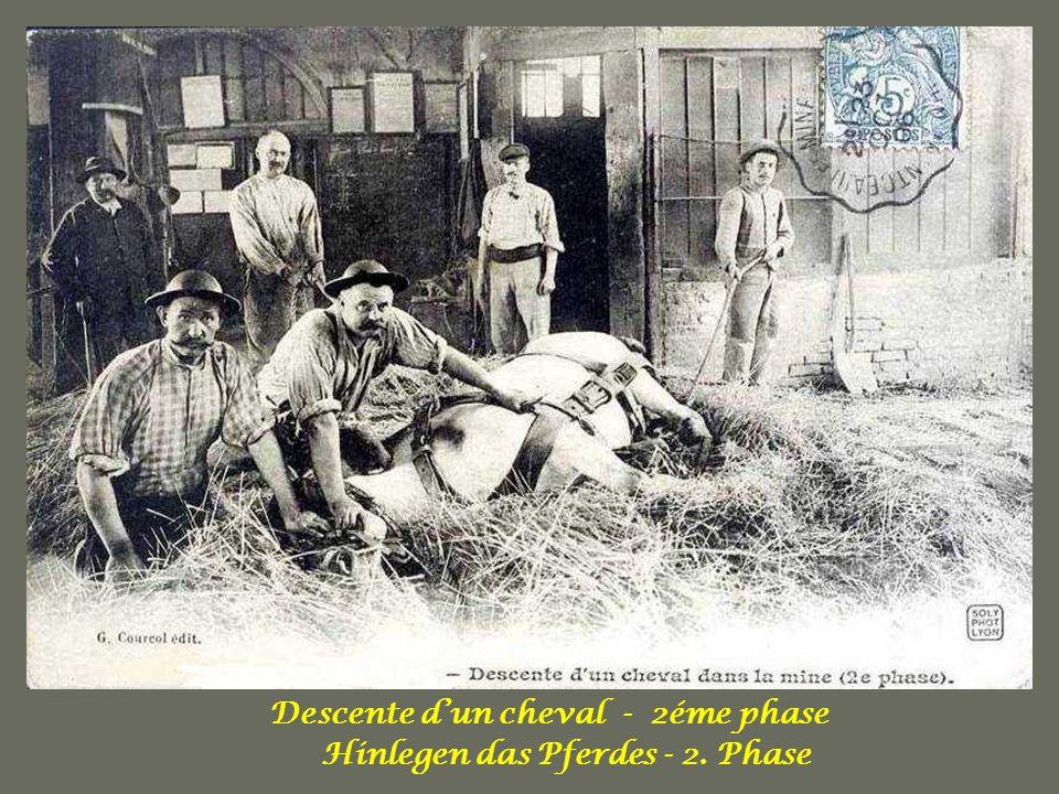 Descente d'un cheval - 2éme phase Hinlegen das Pferdes - 2. Phase