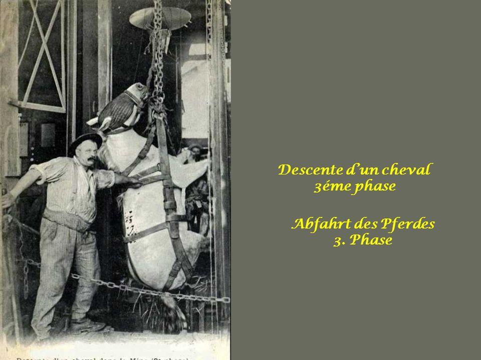 Descente d'un cheval 3éme phase Abfahrt des Pferdes 3. Phase
