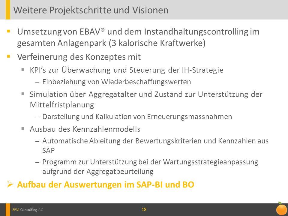 Weitere Projektschritte und Visionen