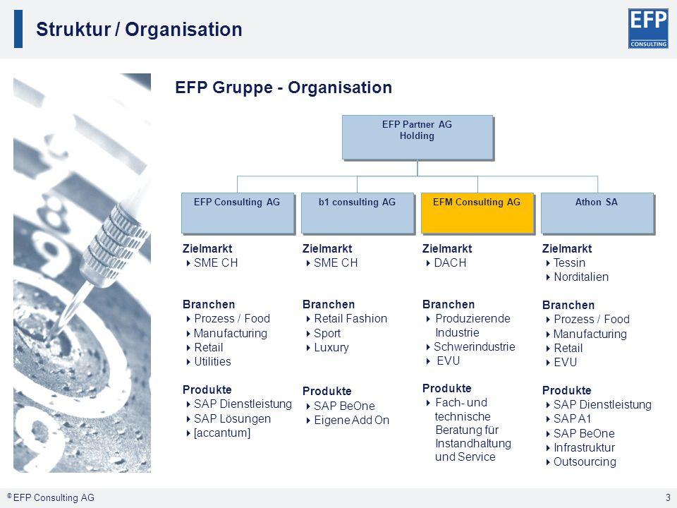 Struktur / Organisation