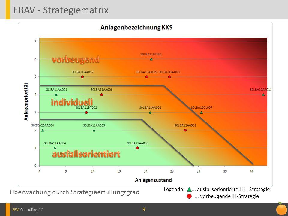 EBAV - Strategiematrix