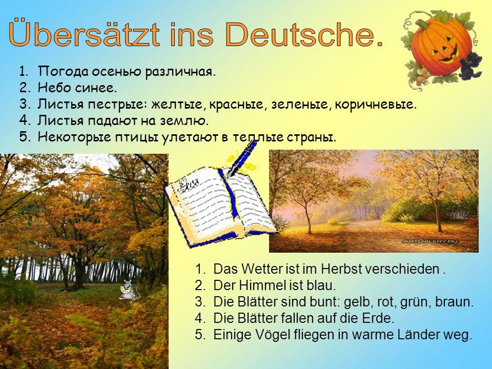 Übersätzt ins Deutsche.