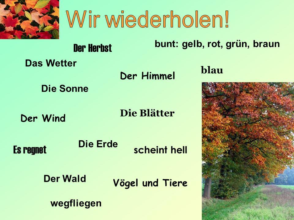 Wir wiederholen! Der Herbst Es regnet bunt: gelb, rot, grün, braun