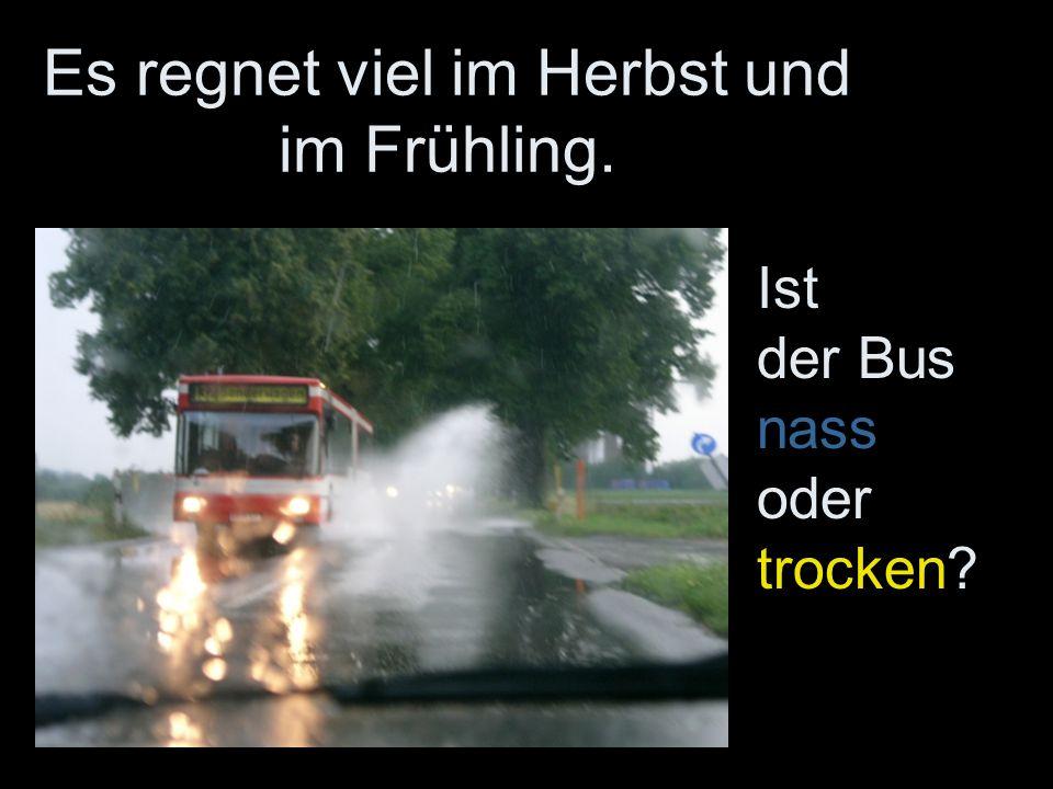 Es regnet viel im Herbst und im Frühling.