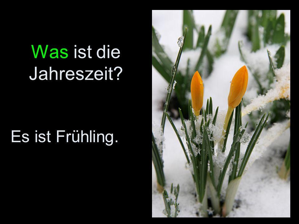 Was ist die Jahreszeit Es ist Frühling.