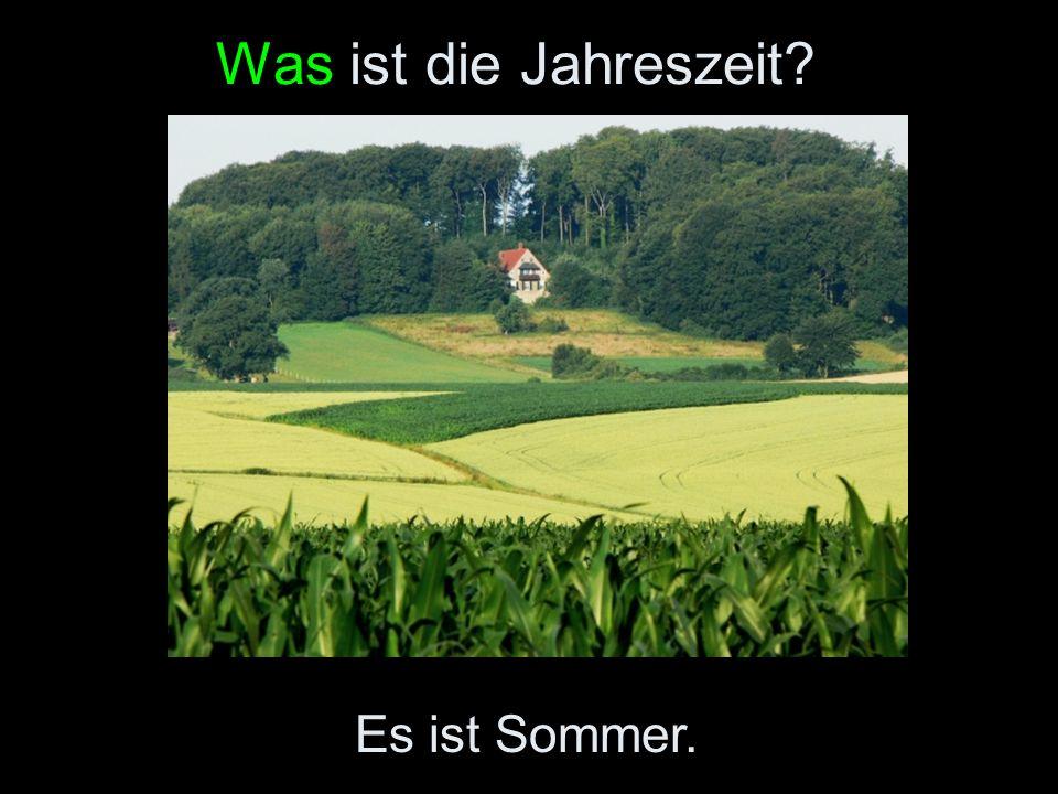 Was ist die Jahreszeit Es ist Sommer.