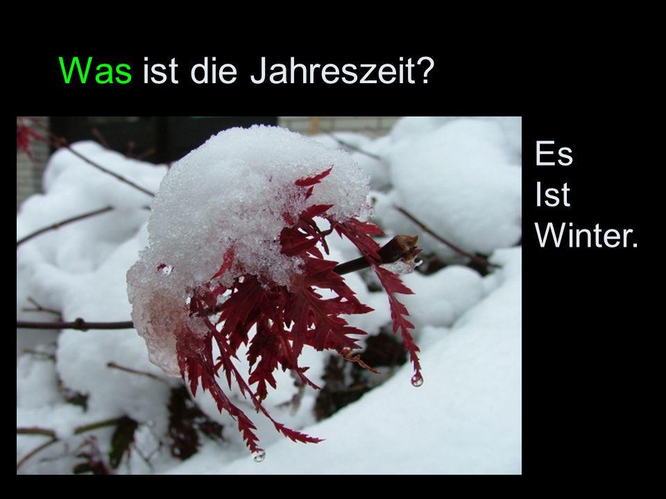 Was ist die Jahreszeit Es Ist Winter.