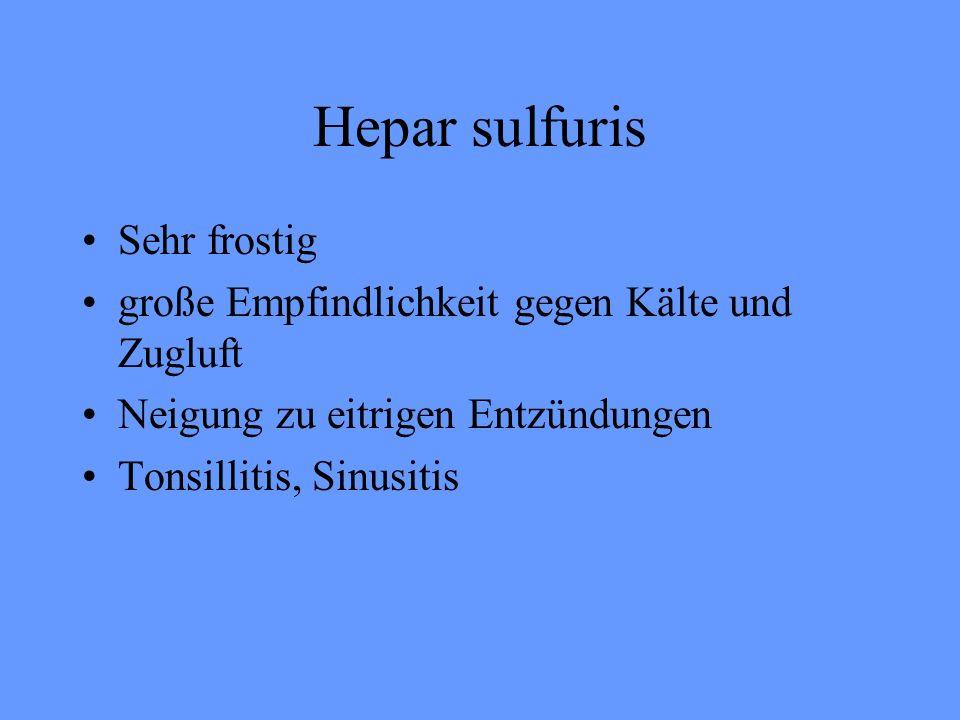 Hepar sulfuris Sehr frostig