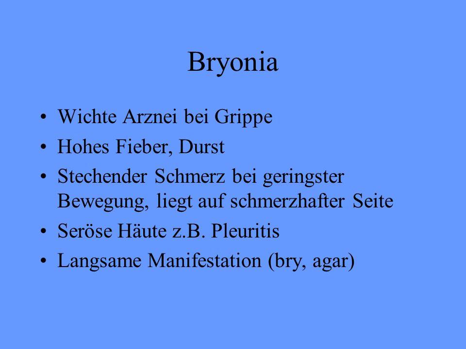 Bryonia Wichte Arznei bei Grippe Hohes Fieber, Durst