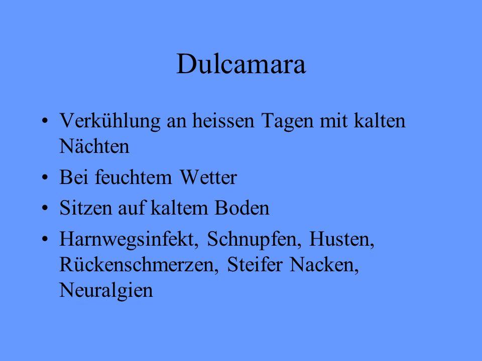 Dulcamara Verkühlung an heissen Tagen mit kalten Nächten