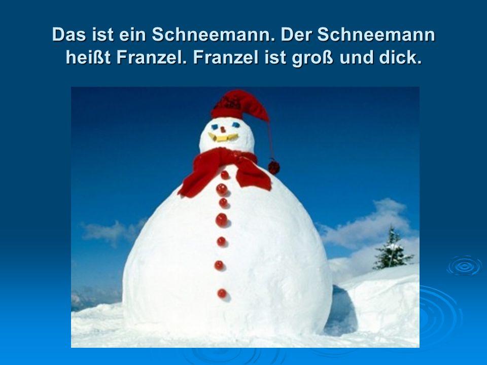 Das ist ein Schneemann. Der Schneemann heißt Franzel