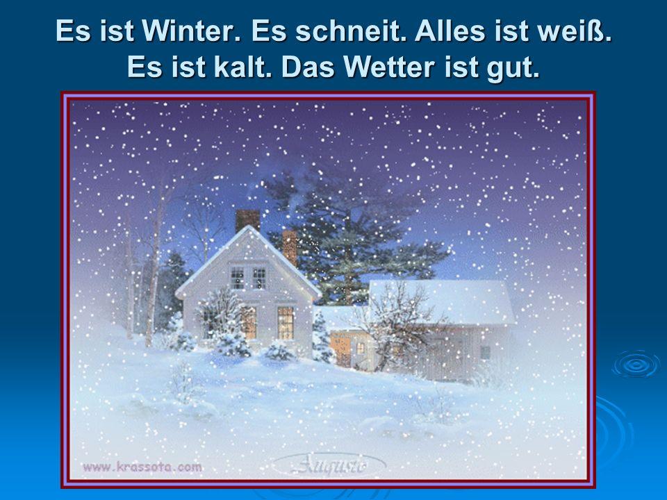 Es ist Winter. Es schneit. Alles ist weiß. Es ist kalt
