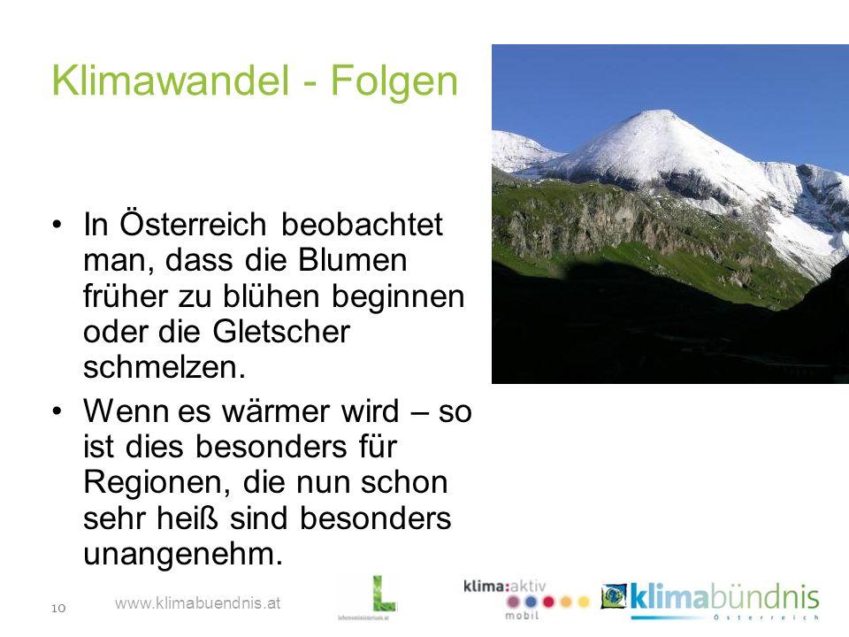 Klimawandel - Folgen In Österreich beobachtet man, dass die Blumen früher zu blühen beginnen oder die Gletscher schmelzen.